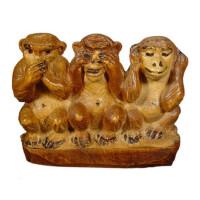Wisdom monkeys