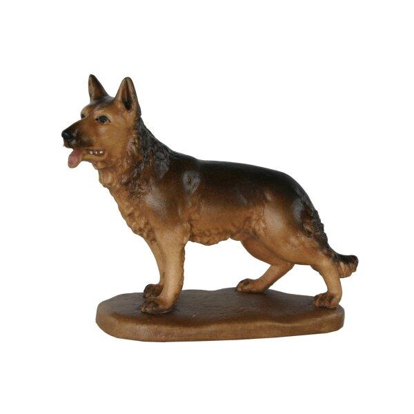 Hund stehend