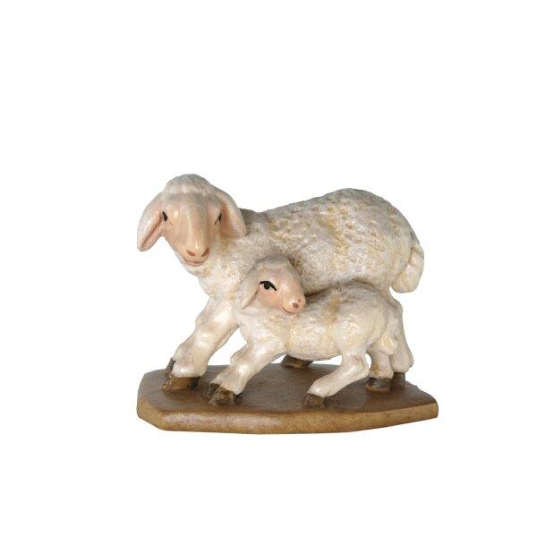 Gruppo pecore in piedi p.barocco