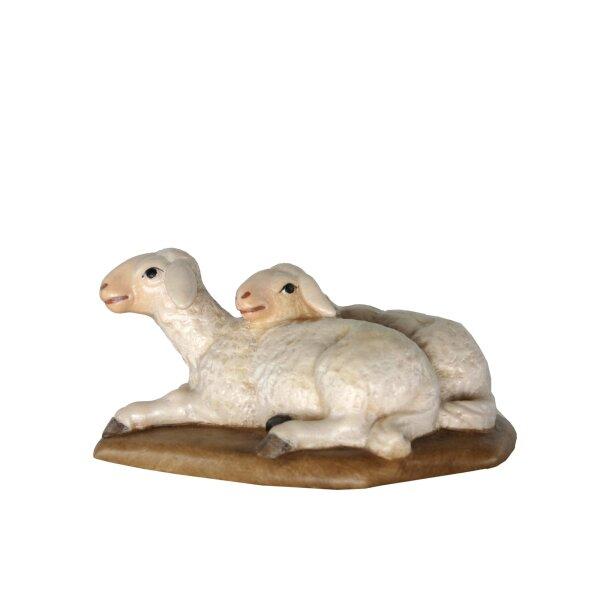 Schafpaar liegend