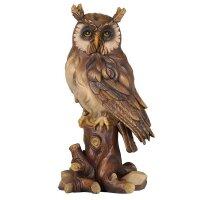 Owl on tree-trunk