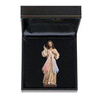 Divine Mercy with case