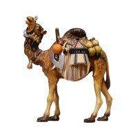 KO Kamel mit Gepäck