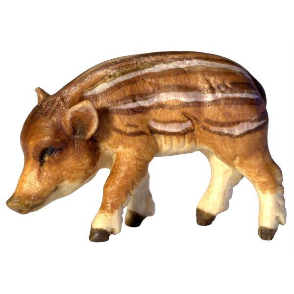 Wildschweinjunge Kopf links