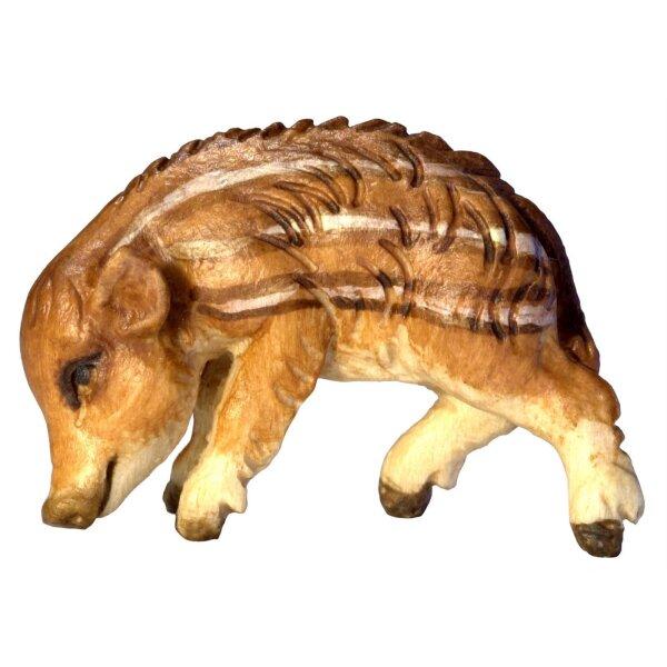 Wildschweinjunge Kopf unten