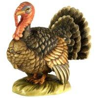 Turkey kock