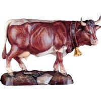 Mottled cow Pinzgau