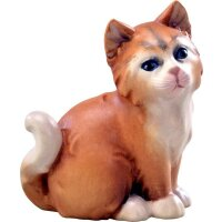 Katze braun
