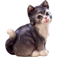 Katze grau