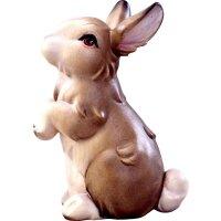 Bunny standing grey