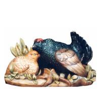 Birkhahn mit Henne